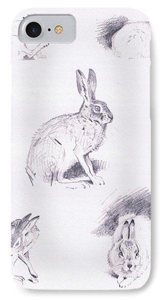 Hare Studies IPhone Case