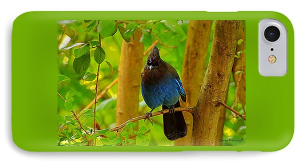 Harold The Stellar Jay IPhone Case