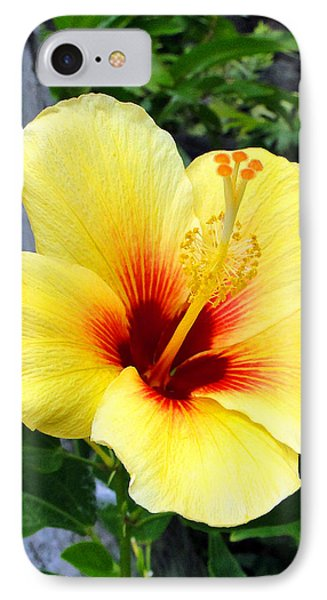 Hawaiian Hibiscus IPhone Case
