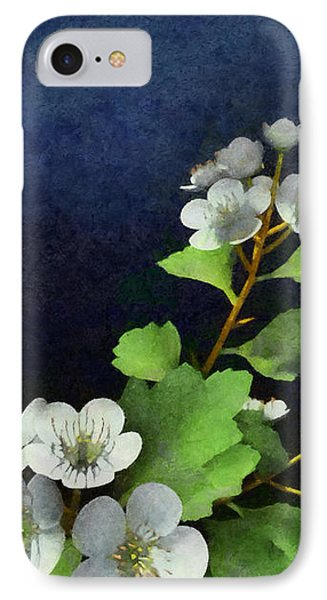 Hawthorne Painted IPhone Case