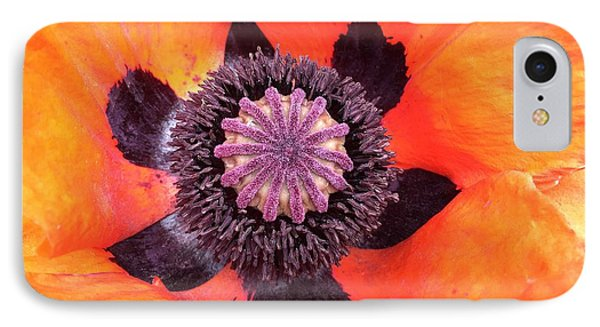 iPhone 8 Case - Heart Of A Poppy by Orphelia Aristal