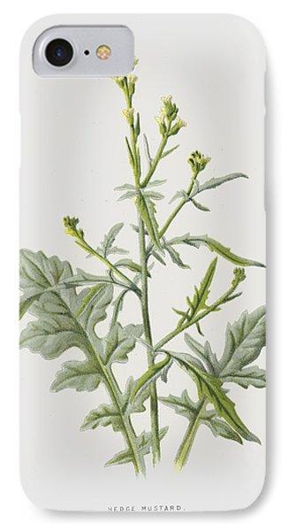 Mustard iPhone 8 Case - Hedge Mustard by Frederick Edward Hulme