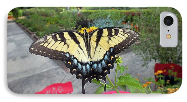 Hello Swallowtail  IPhone Case