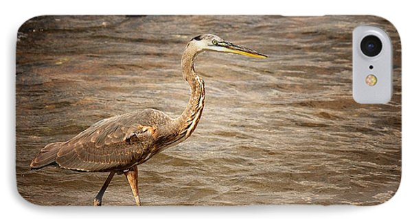 Heron At The Lake IPhone Case