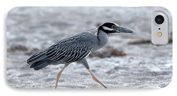 Yellow-crowned Night Heron On A Mission IPhone Case