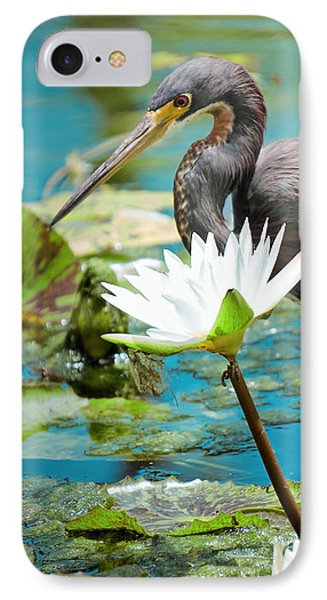 Heron With Water Lillies IPhone Case