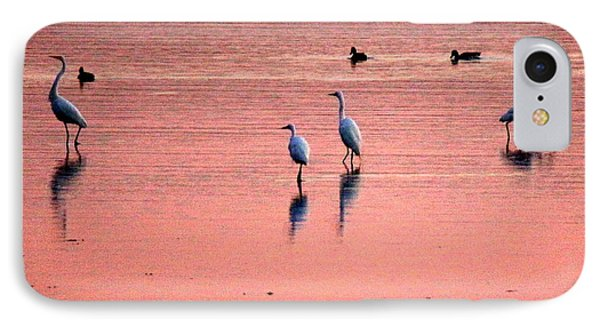 Herons At Sunrise IPhone Case