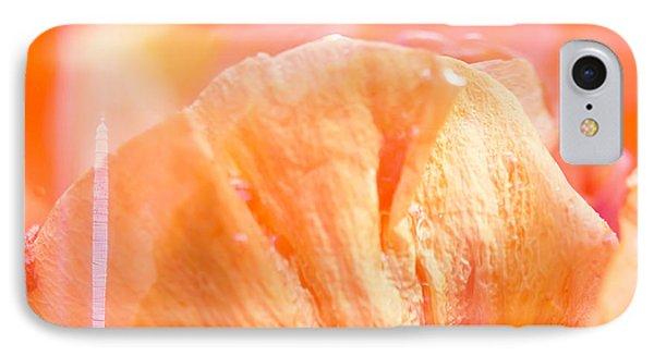 Hibiscus Zest IPhone Case