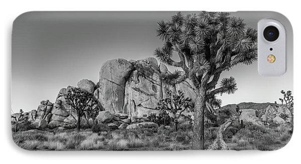 Hidden Valley Rock IPhone Case