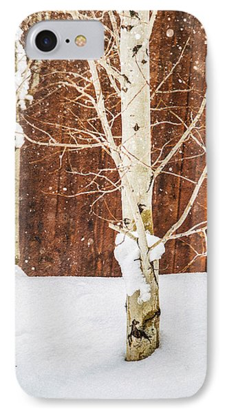 Holiday Aspens IPhone Case