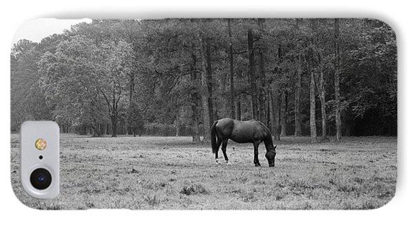 Horse In Pasture IPhone Case