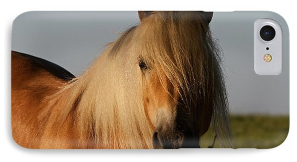 Horse With No Name IPhone Case