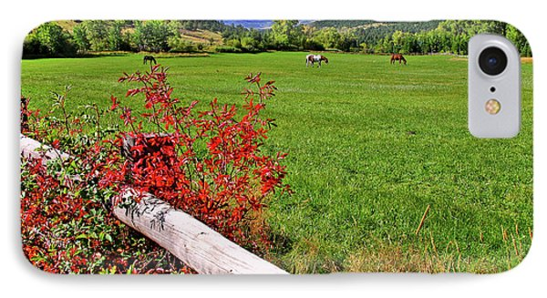 Horses In The San Juans IPhone Case