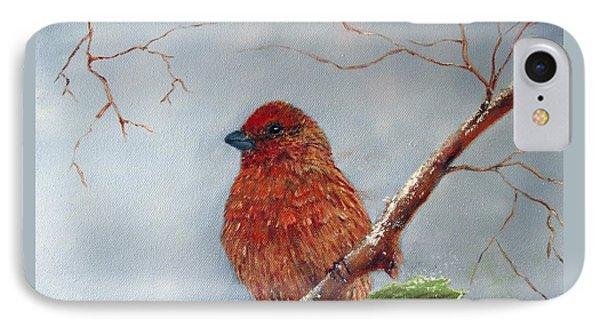 House Finch In Winter IPhone Case