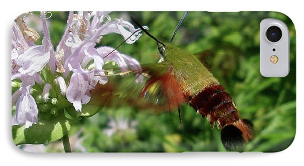 iPhone 8 Case - Hummingbird Clear-wing Moth At Monarda by Mother Nature