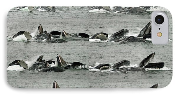 Humpback Whale Bubble-net Feeding Sequence X8 IPhone Case