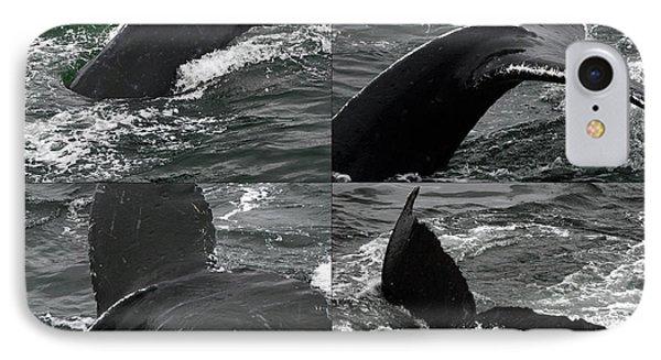 Humpback Whale Fluke Montage IPhone Case