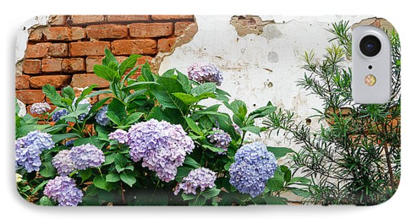 Hydrangea And Bricks IPhone Case