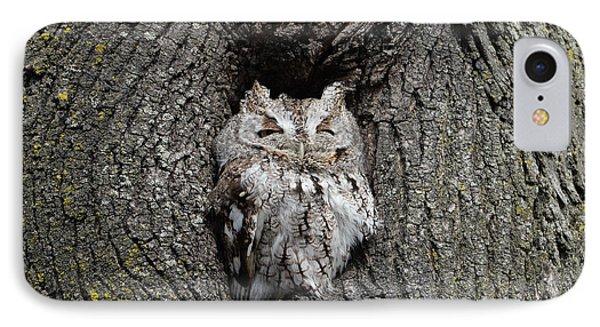 Invincible Screech Owl IPhone Case