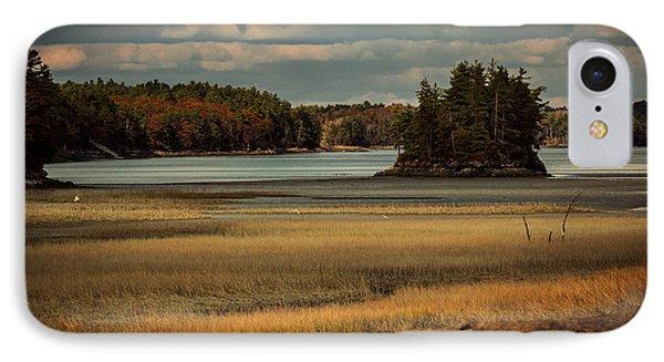 Island On The Lake IPhone Case