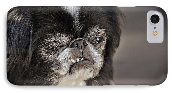 Japanese Chin Doggie Portrait IPhone Case