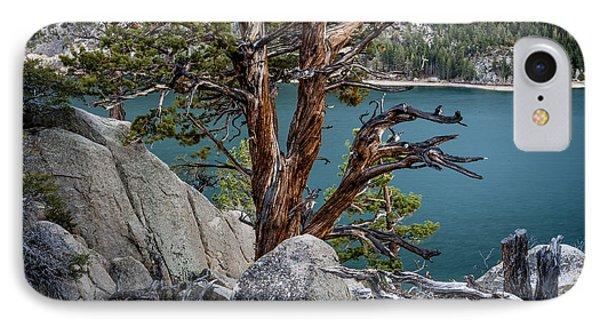 June Lake Juniper IPhone Case