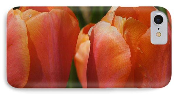 Kathy's Tulip Pair IPhone Case