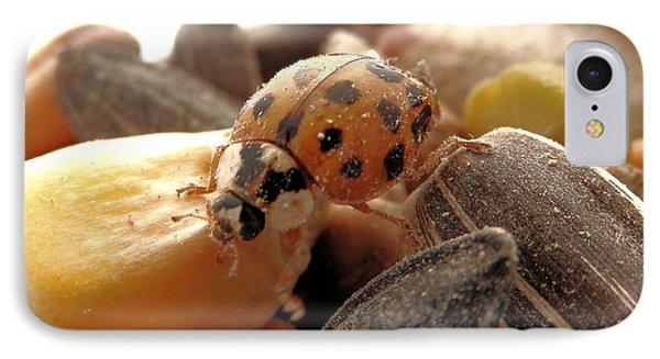 Ladybug On The Run IPhone Case
