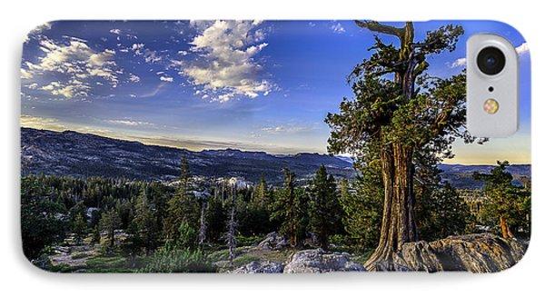Lake Alpine Tree IPhone Case