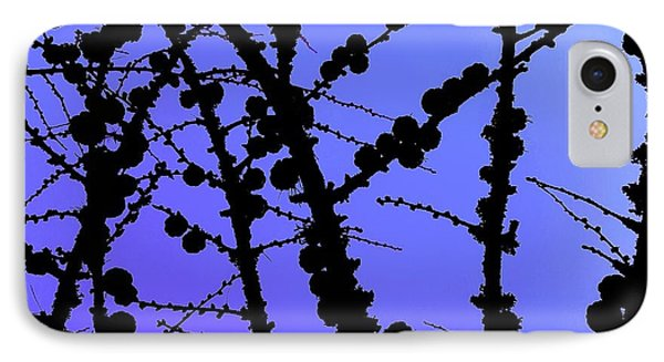 Larch Cones Against The Sky IPhone Case