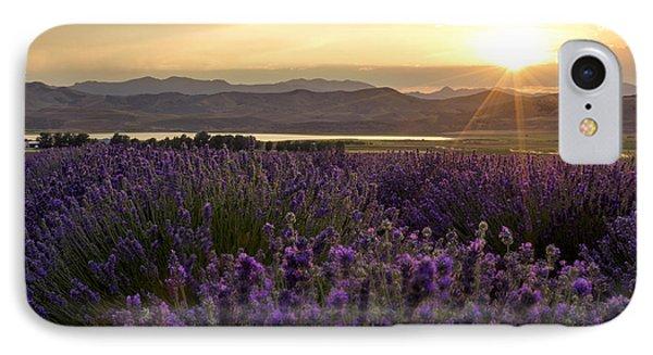 Lavender Glow IPhone Case