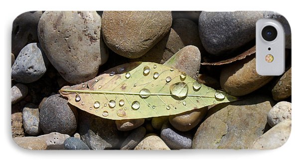 Leaf With Water Droplets In Rocks IPhone Case