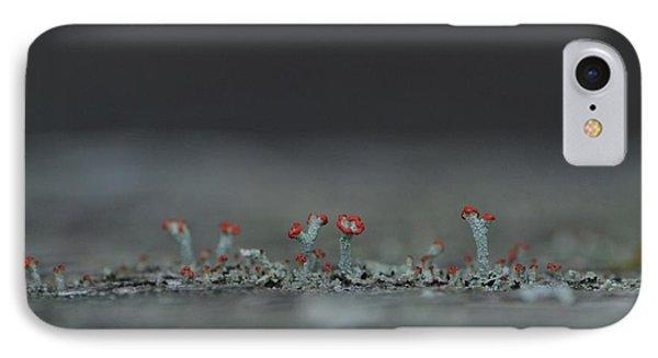 Lichen-scape IPhone Case