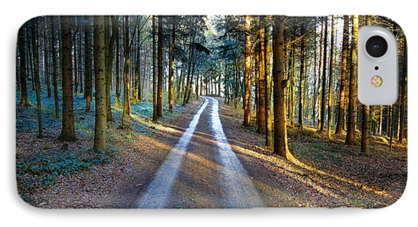 Light Path Crossing In The Woods IPhone Case