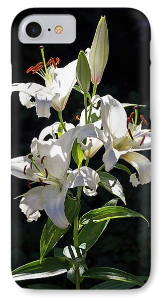 Lilies In The Sun IPhone Case