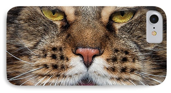 Tiger Face. IPhone Case
