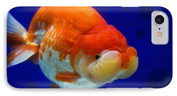 Lion Head Goldfish 4 IPhone Case