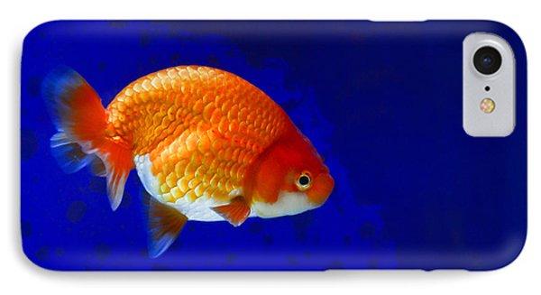 Lion Head Goldfish 6 IPhone Case