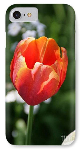 Lit Tulip 02 IPhone Case
