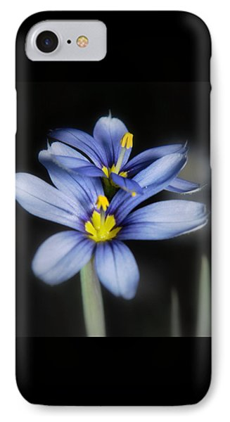 Little Blue Flowers IPhone Case