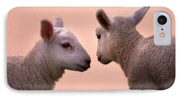 Sheep iPhone 8 Case - Little Gossips by Angel Ciesniarska