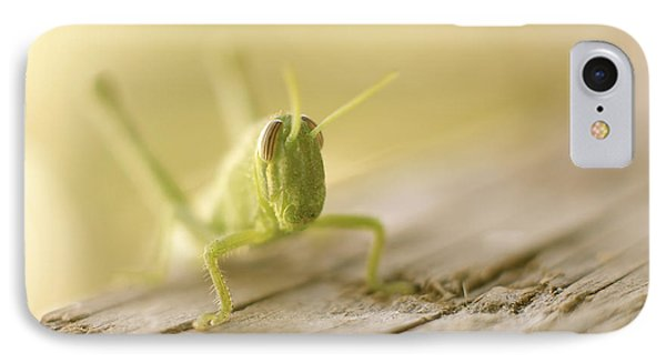 Little Grasshopper IPhone Case