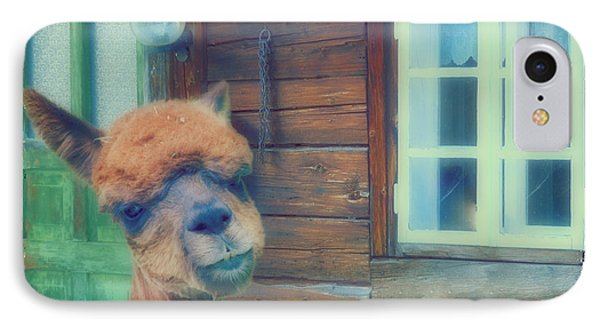 Visiting Llama  IPhone Case