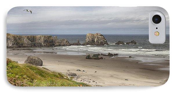 Lone Gull - Bandon Beach IPhone Case
