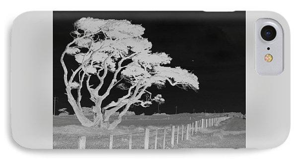 Lone Tree, West Coast IPhone Case