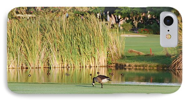 Lonely Goose On The Golf Course IPhone Case