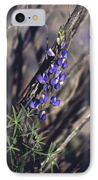 Lonely Lupine IPhone Case