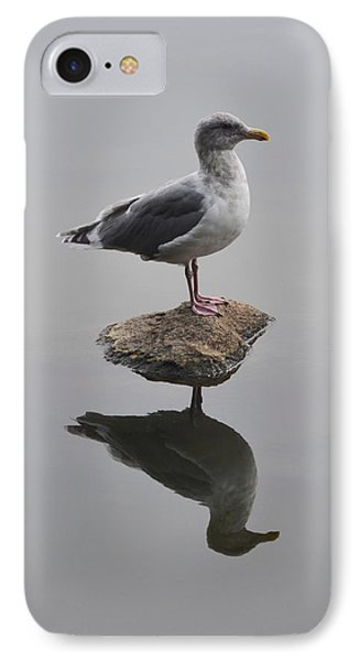Lost In The Lagoon IPhone Case