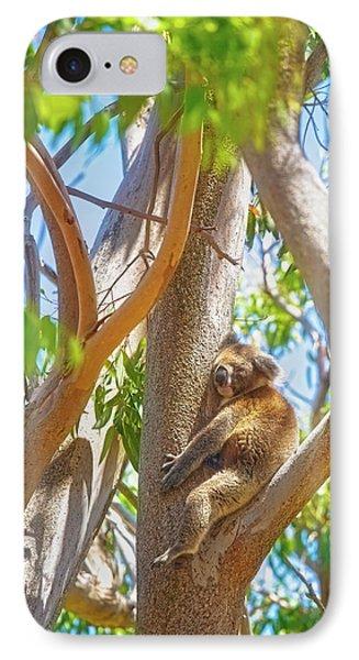 Love My Tree, Yanchep National Park IPhone Case