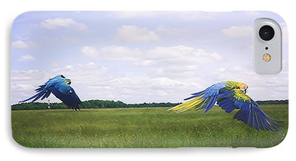 Macaws Flying Together IPhone Case